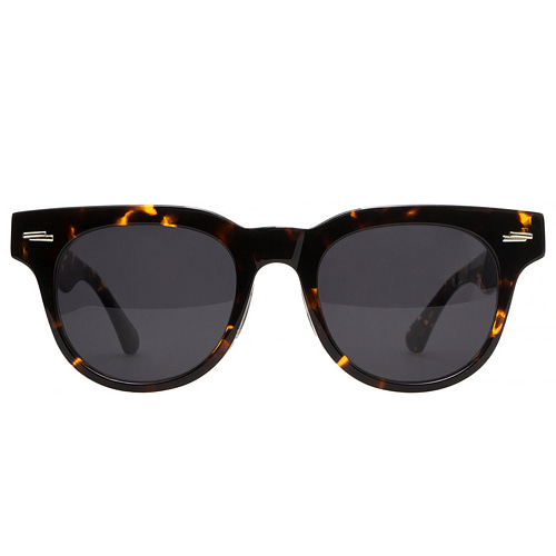 AILEN - 02 Sunglasses (Smoke Black Lens)